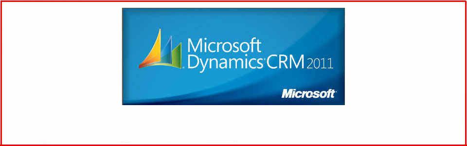 Microsoft Partner CRM